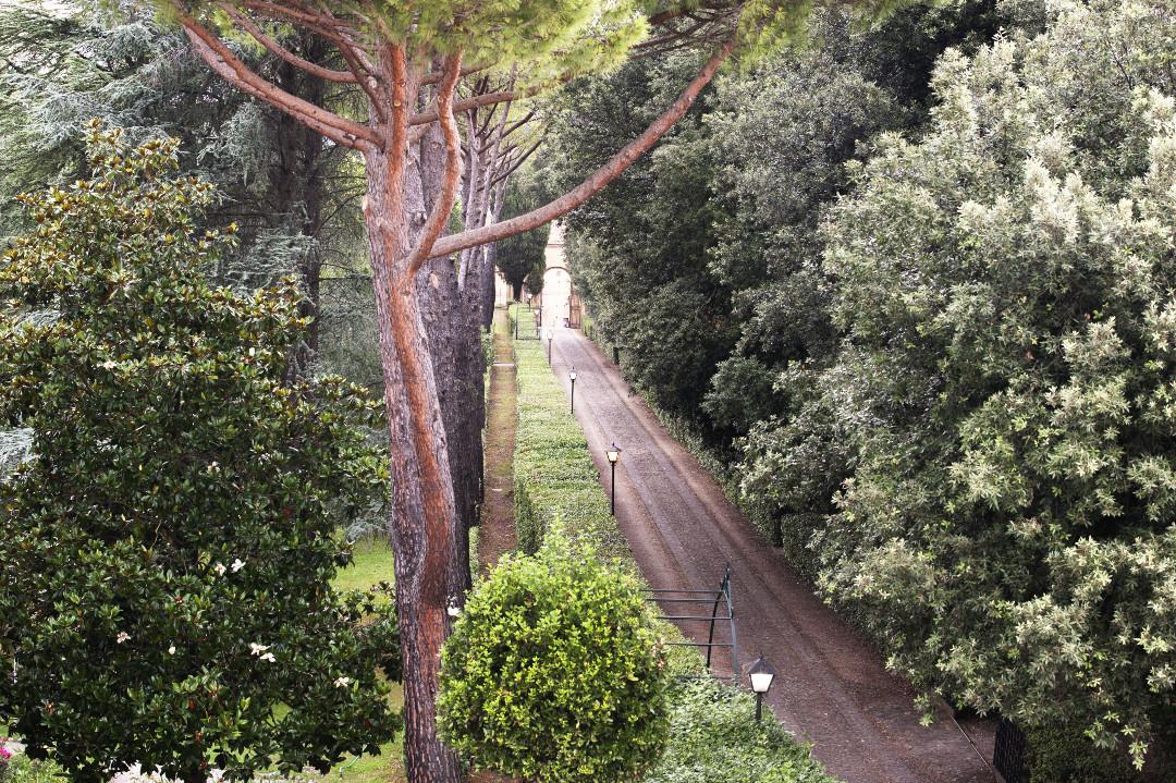 Avenida Do Parque